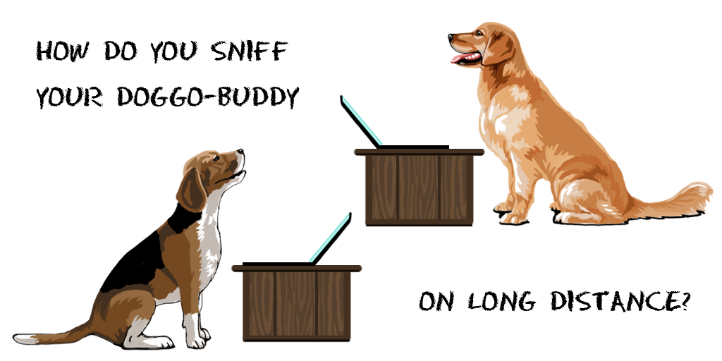 Existing Solutions Research - How do you sniff your doggo-buddy on long distance?
