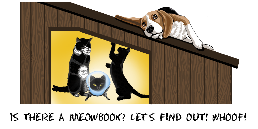 Competitor Analysis - Is there a MeowBook? Let's find out! Whoof!